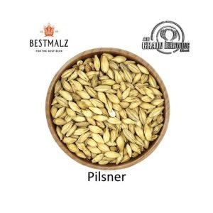 BestMalz Pilsner Malt